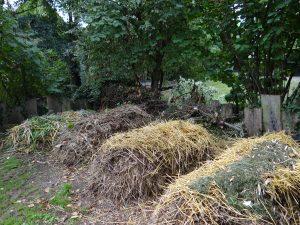 compostage-en-tas