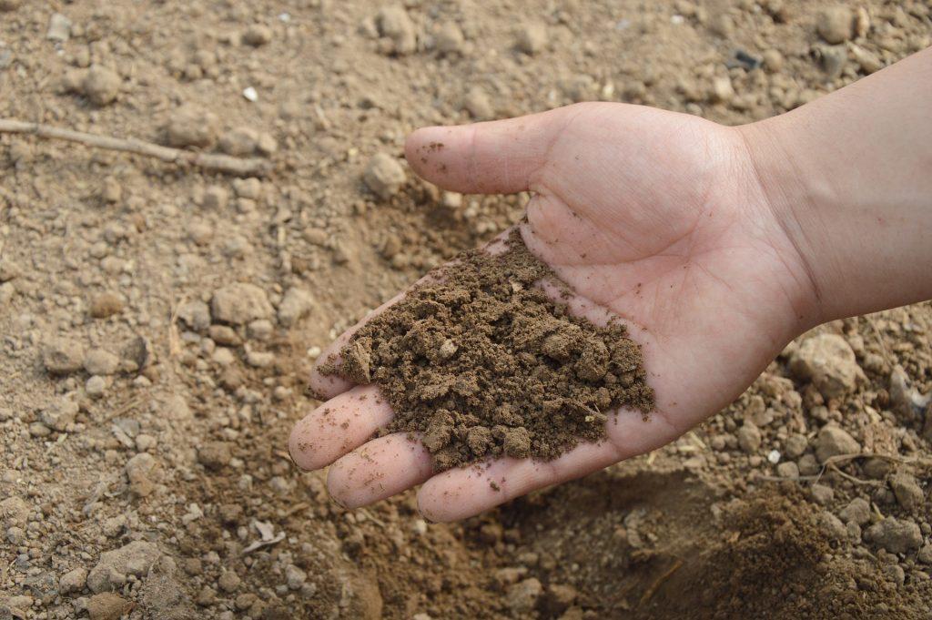 Caractéristiques du sol