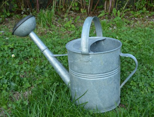 watering-can-1376691_1920