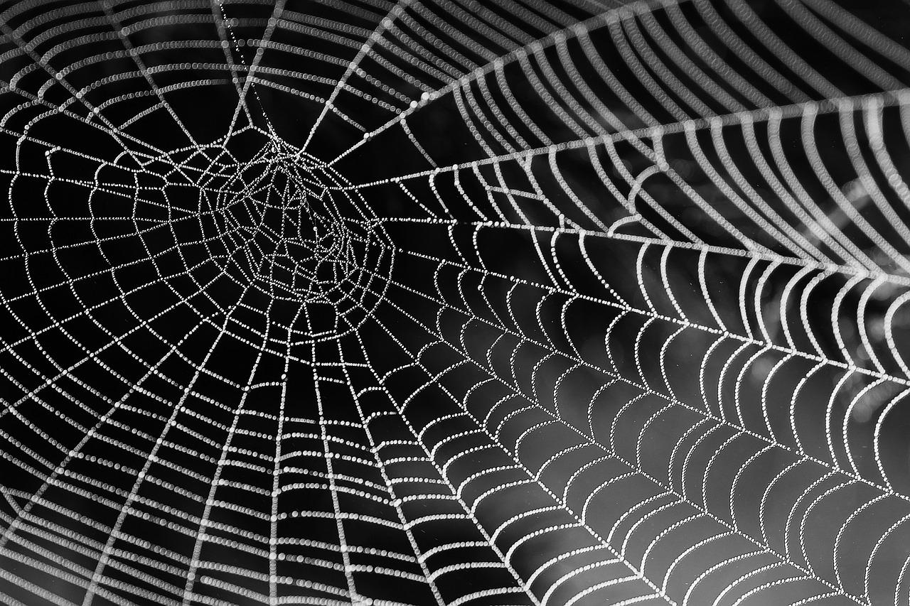 fil d'araignée
