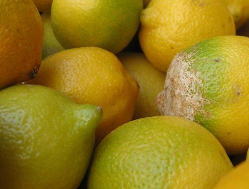 fruits pourris