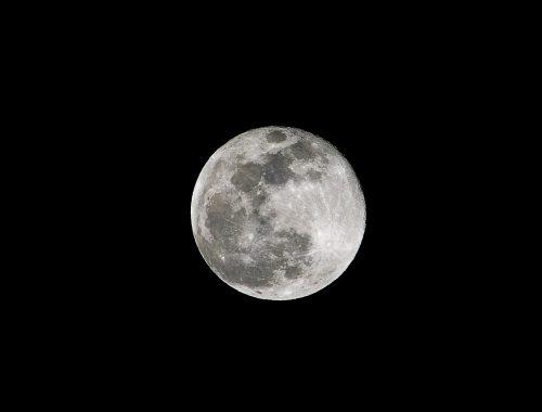 L'influence de la lune sur le jardin, mythe ou réalité