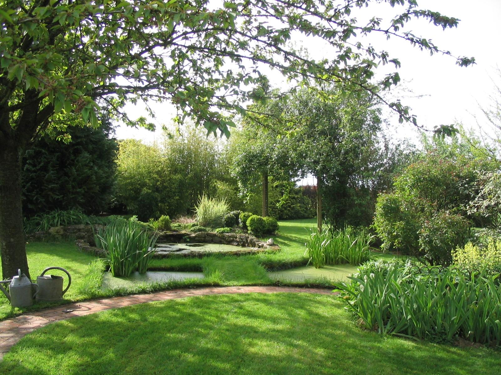 le jardin aquatique - jardiner autrement