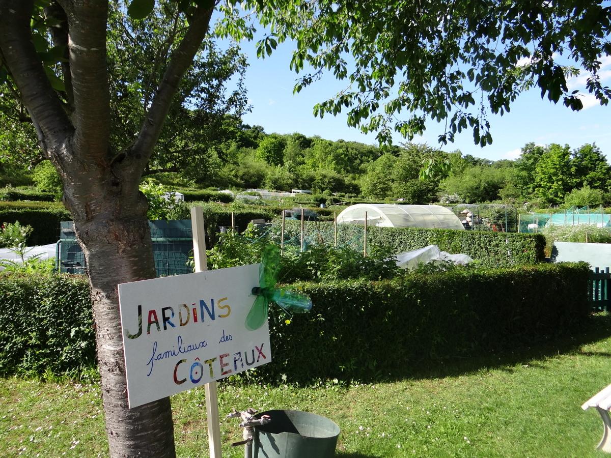 réseau de haies-jardins familiaux-auxiliaires-agroécologie