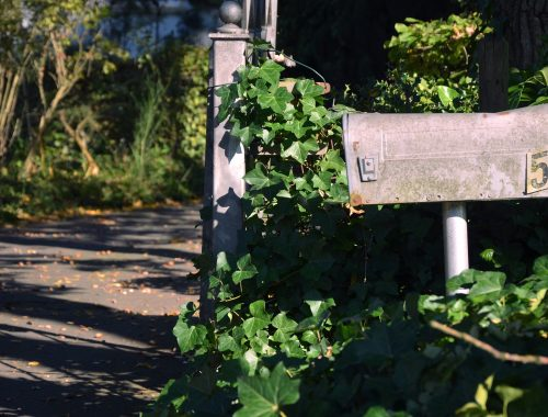commander les brochures jardiner autrement