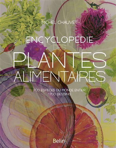 plantes alimentaires botanique ethnobotanique usages