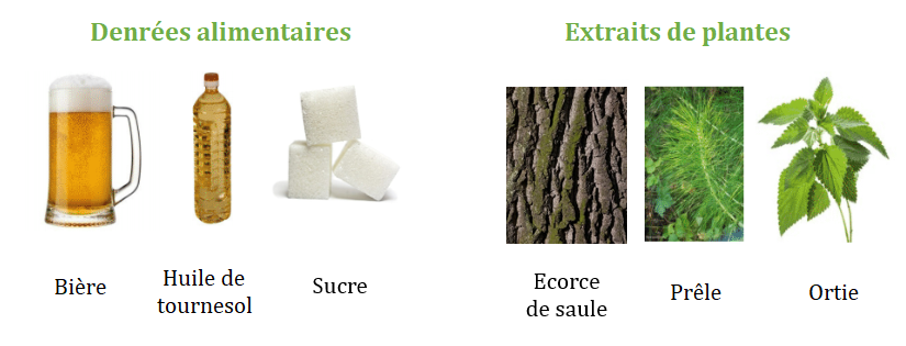 Exemples de substances de base