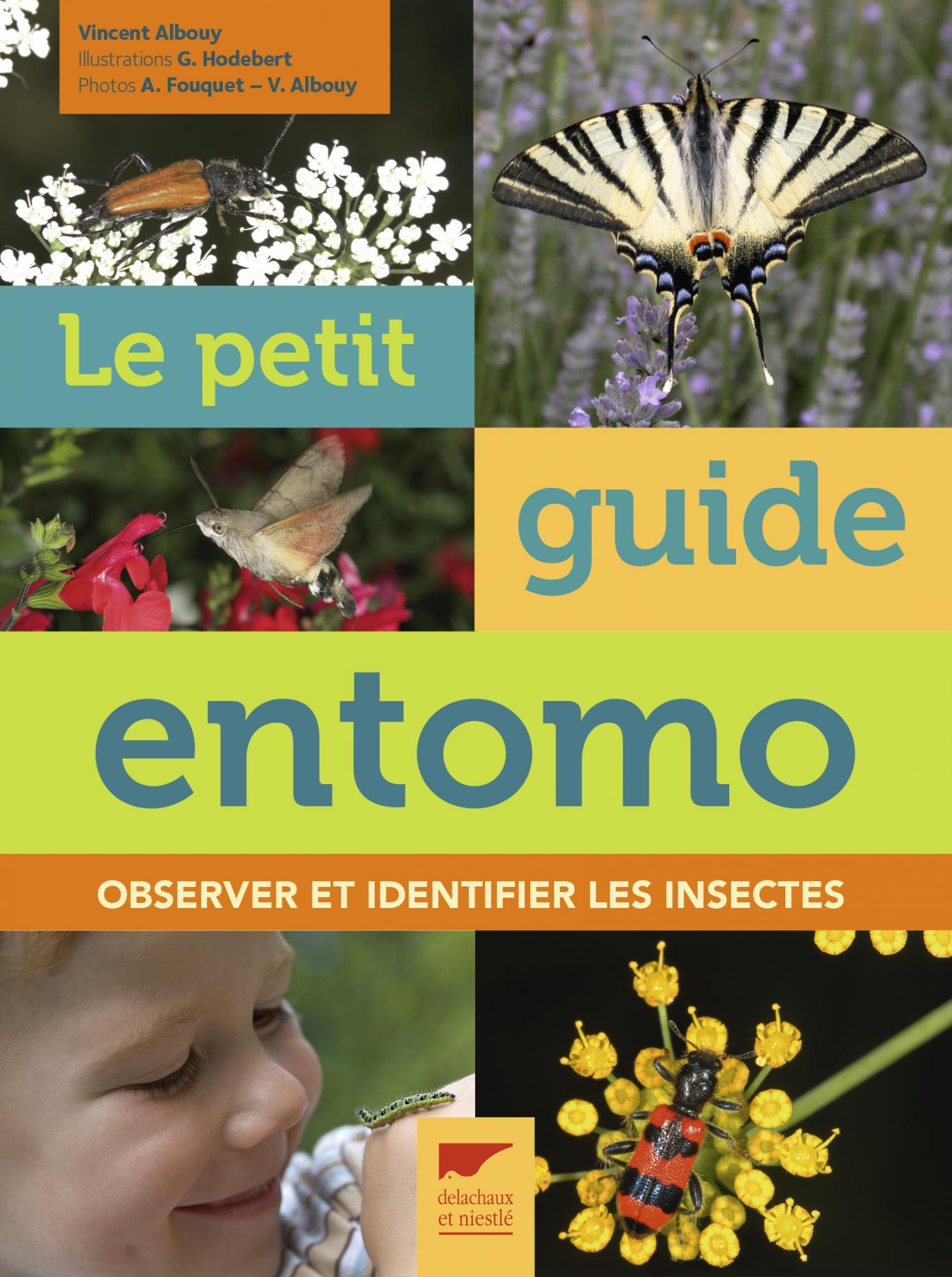 Le petit guide entomo