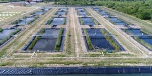 Plateforme expérimentale nationale d'écologie aquatique (PLANAQUA)