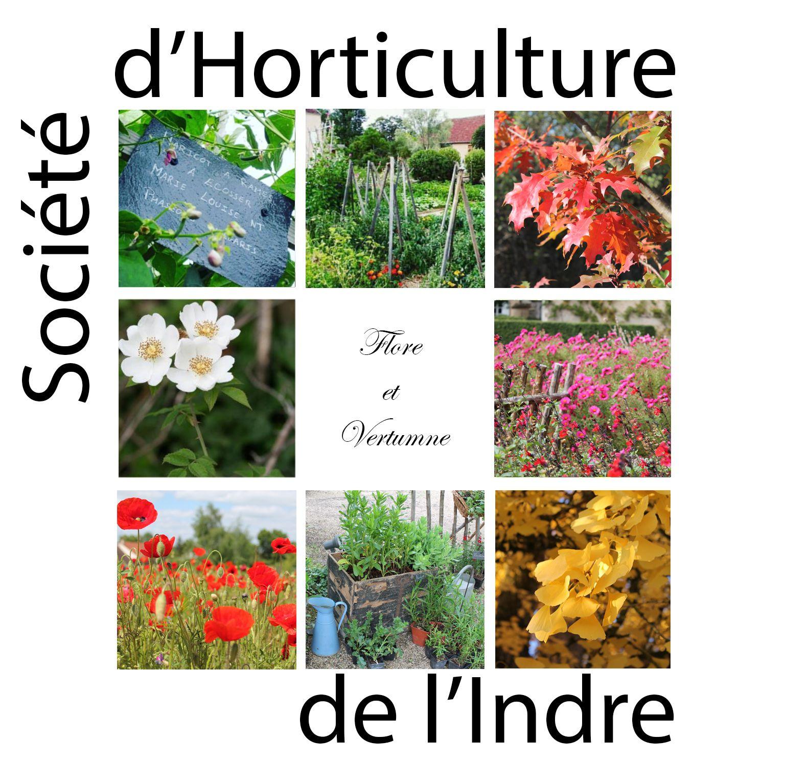 Logo Société d'Horticulture de l'Indre