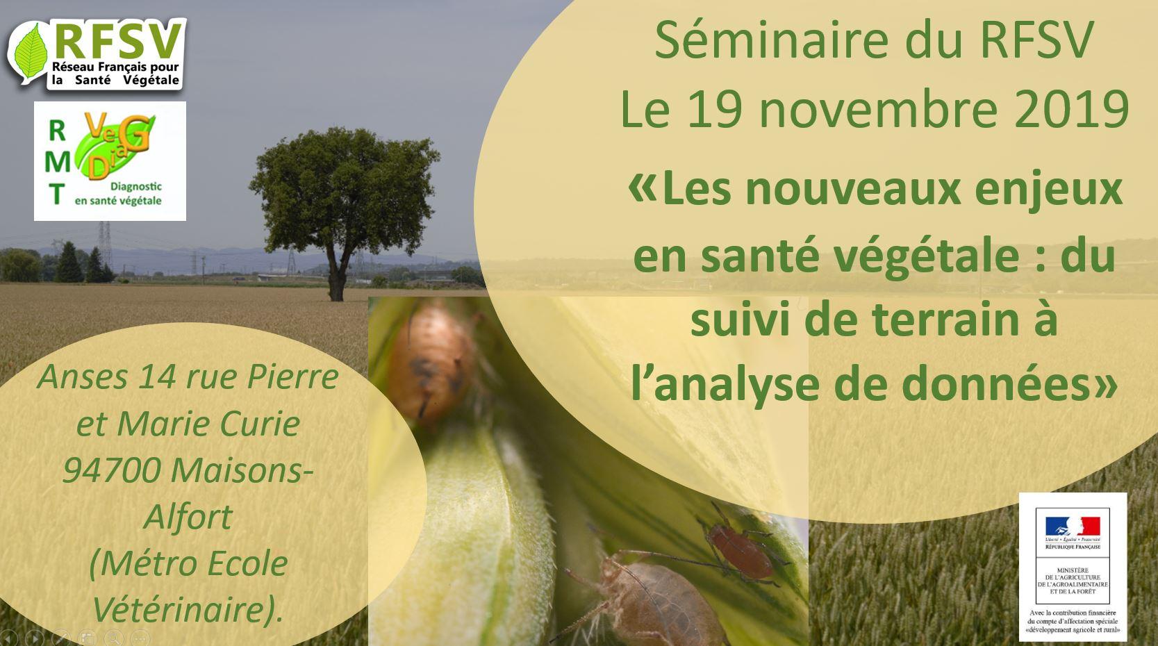 affiche séminaire RFSV 19/11/2019