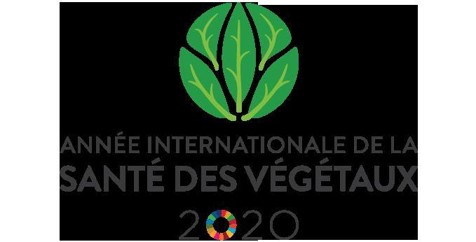 Logo année internationale de la santé des végétaux