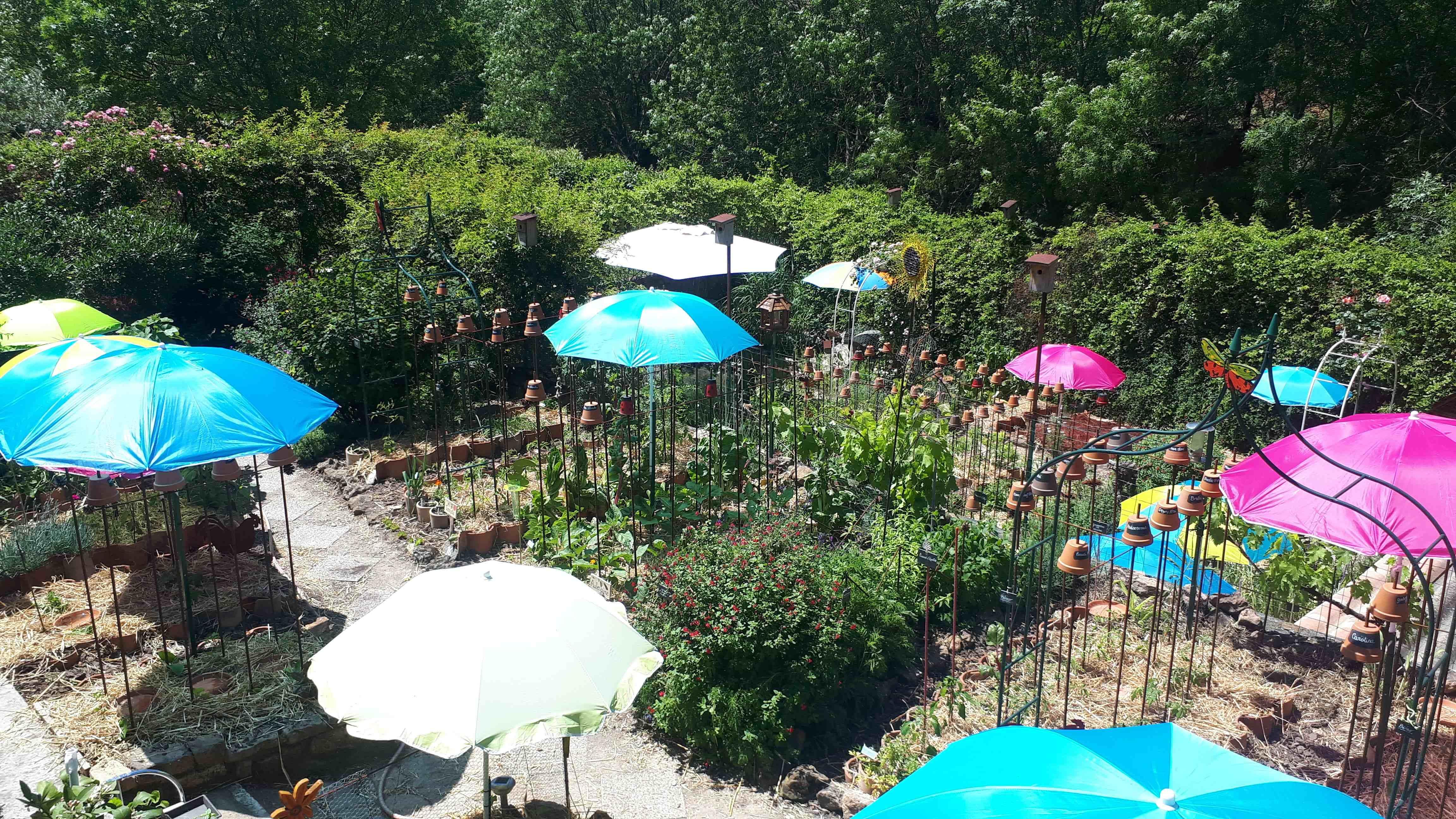 Le jardin de Cathy Babau