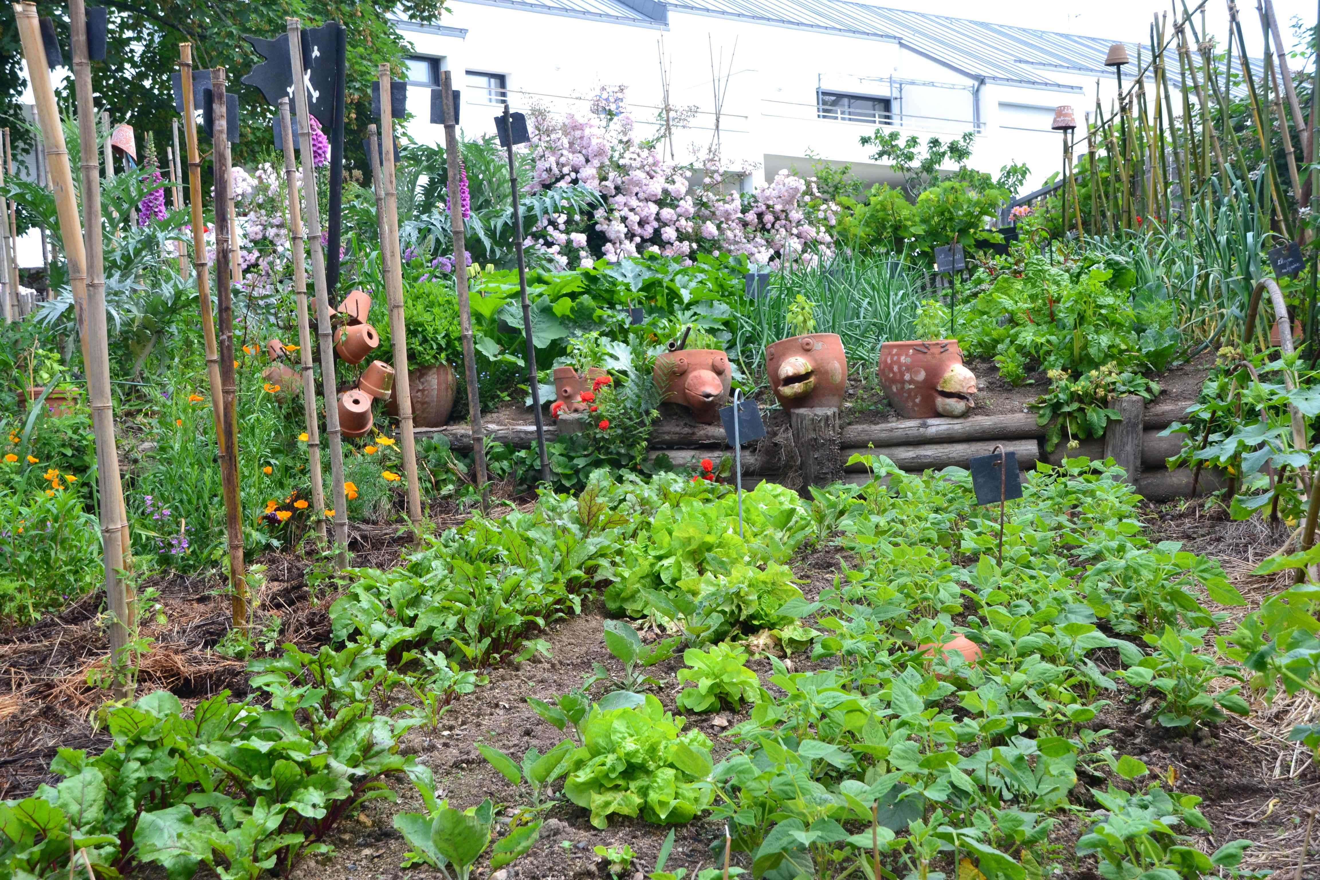 Le jardin de Christian Marchand