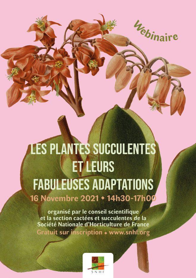 """Webinaire """"Les plantes succulentes et leurs fabuleuses adaptations"""""""