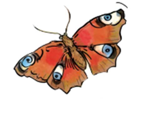 Illustration observation des insectes pour les enfants